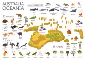 Fauna and flora of Australia & Oceania