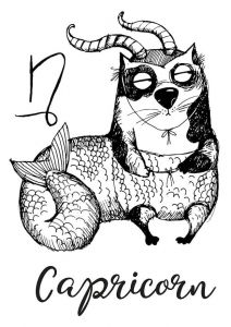 Cat zodiac: Capricorn