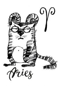 Cat zodiac: Aries