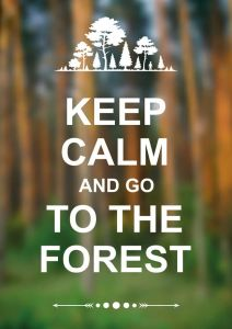 Keep Calm and go to the forest