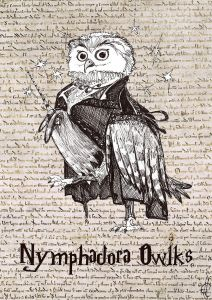 Nymphadora Owlks